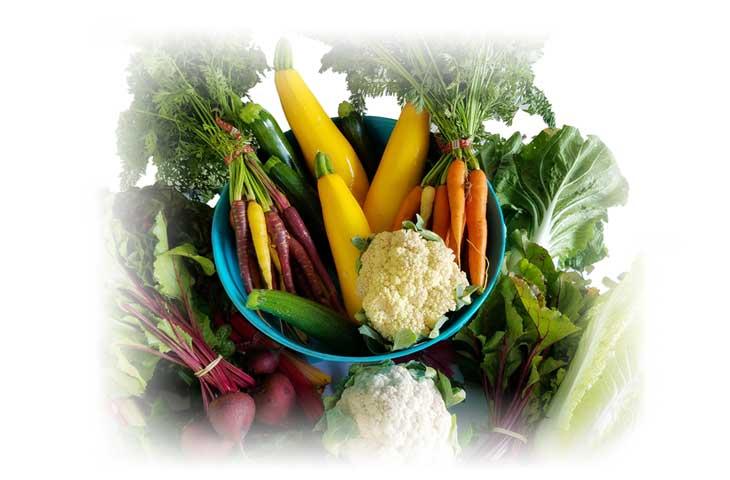 Ponad 60% nowotworom zapobiegniesz przez dietę