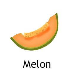 Melon nasoki letnie